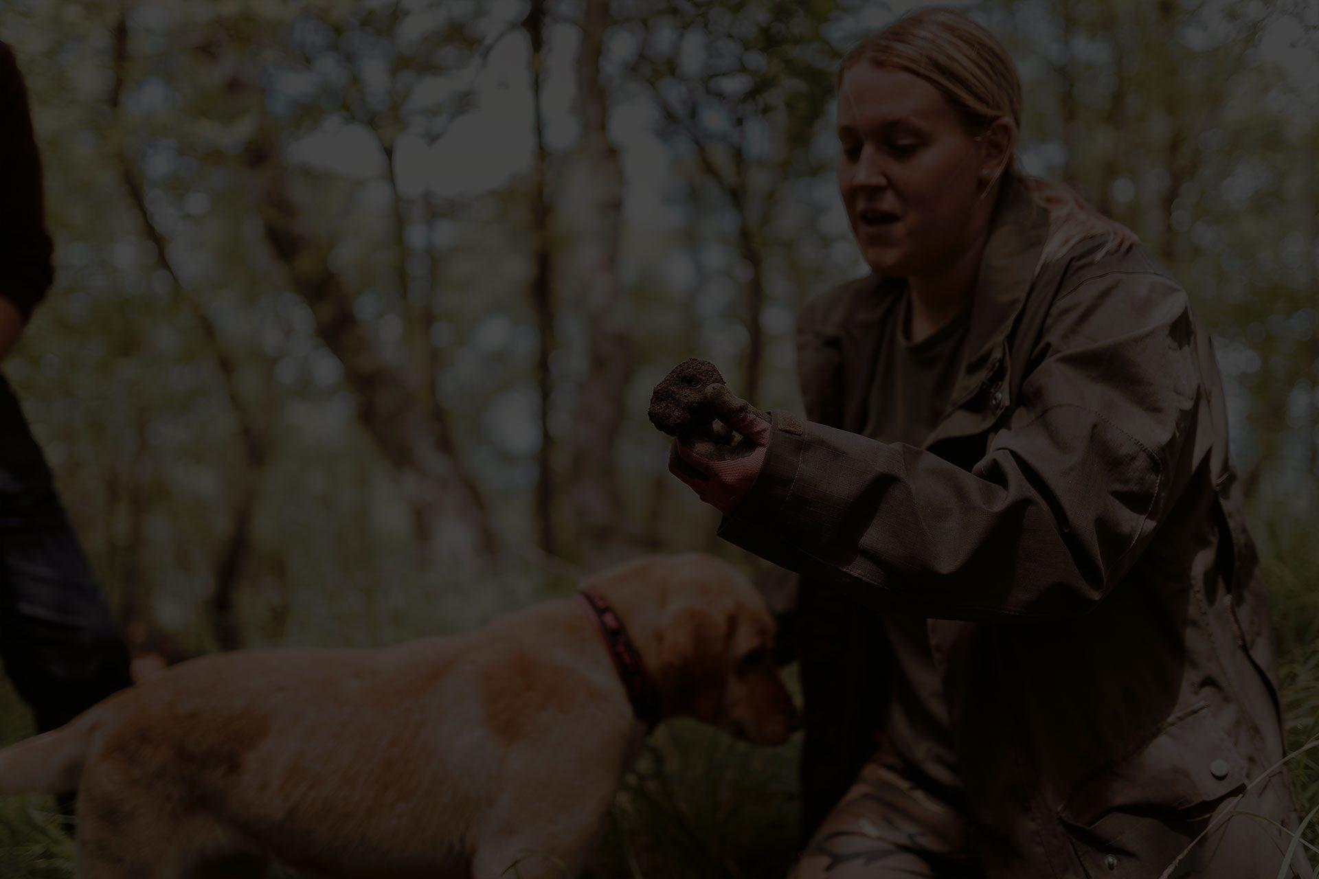 Truffle Hunting Slovenia